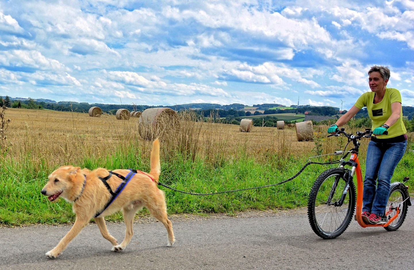 Dogscooter-Zughundesport-APORT-01