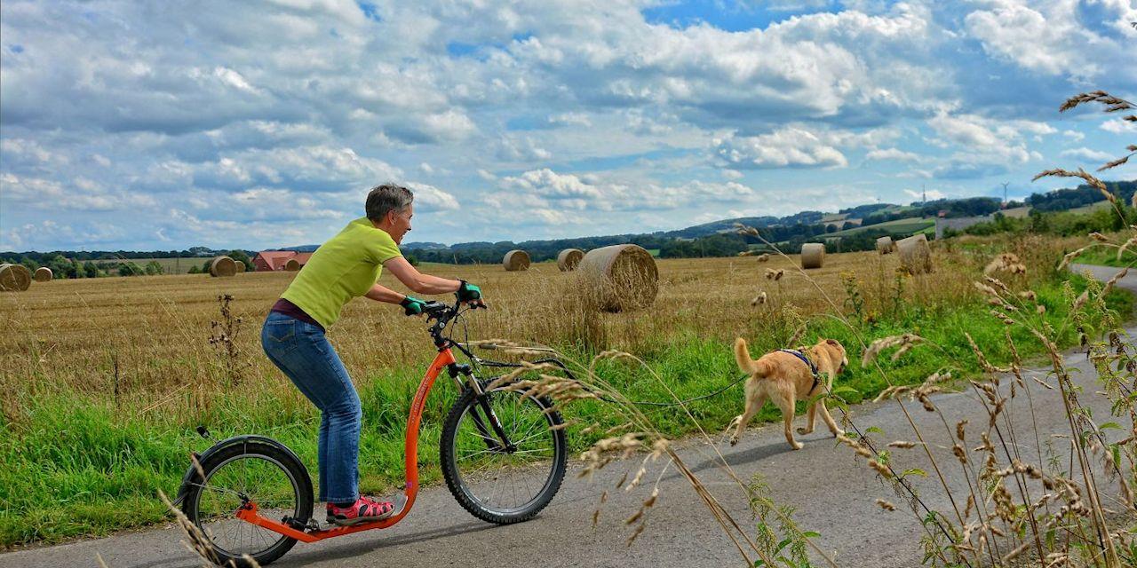 Dogscooter-Zughundesport-APORT-05-zugeschnitten