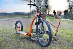 Dogscooter-Zughundesport-APORT-07