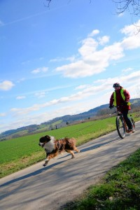 Dogscooter-Zughundesport-APORT-121