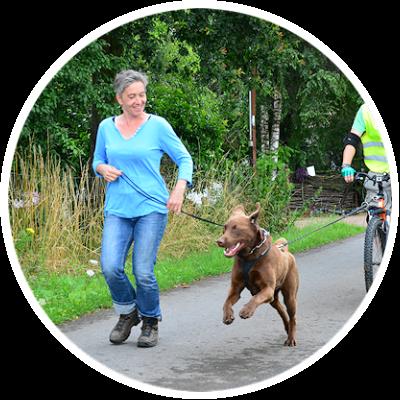 Zughundesport beinhaltet auch die Theorie vom Dogscooter; hier bei APORT