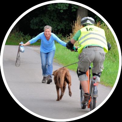 Zughundesport beinhaltet auch Übungen mit dem Dogscooter; hier bei APORT