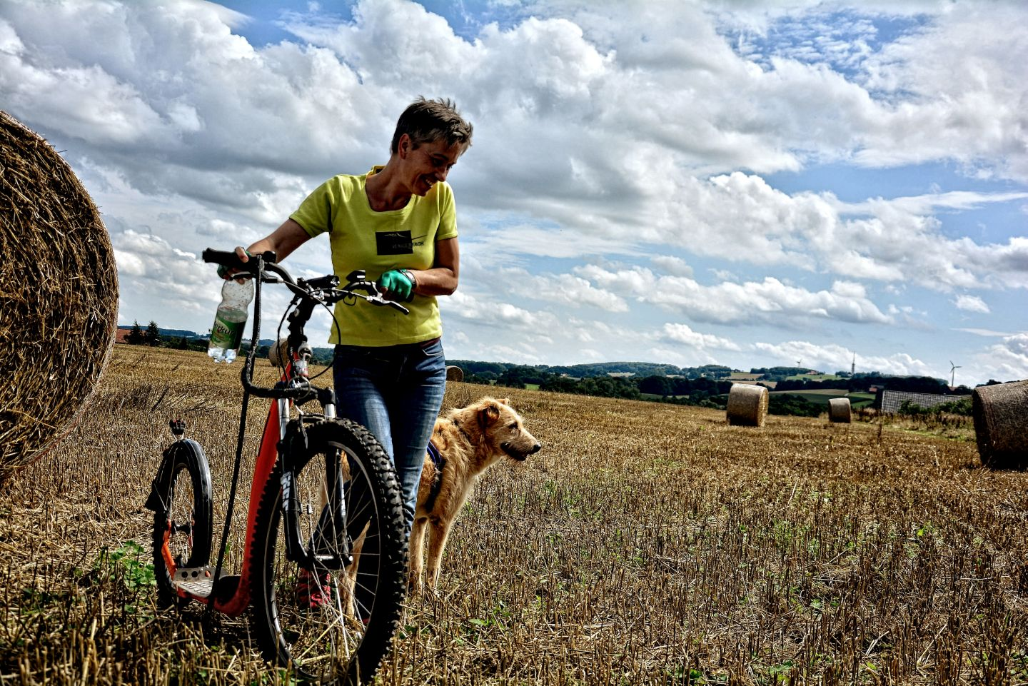 Dogscooter-Zughundesport-APORT-28