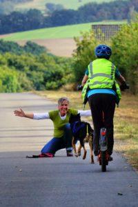 Trainingsaufbau im Dogscooting, Bikejöring und Canicross, Zughundesport